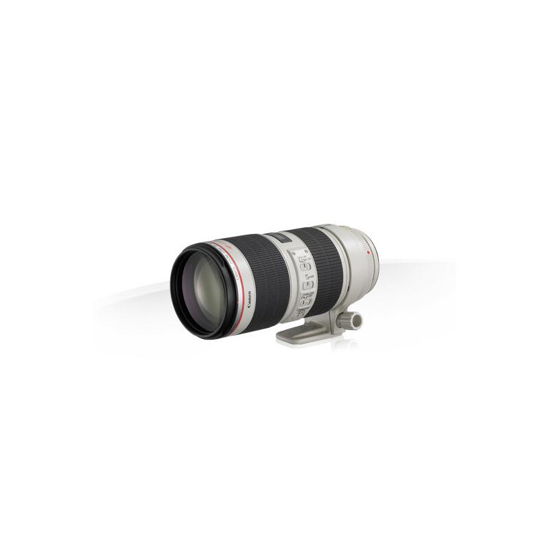 Canon EF 70-200mm f/2.8L IS II USM #1
